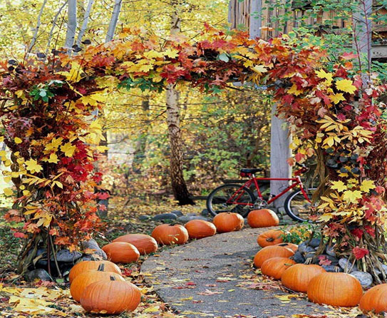 Fresh and Inspiring Fall Outdoor Decor