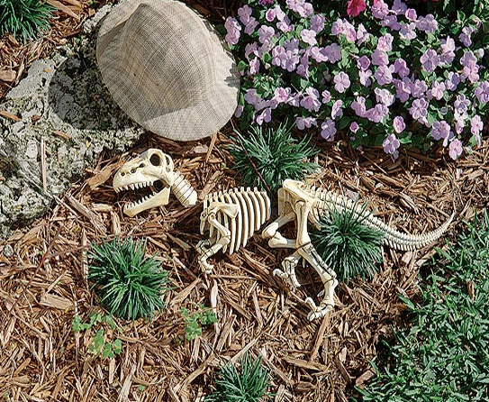 Garden Ornaments to Create a Pleasant Appeal