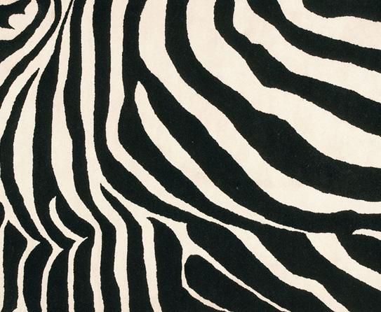 Zebra print rugs add color to modern floors for Zebra print flooring