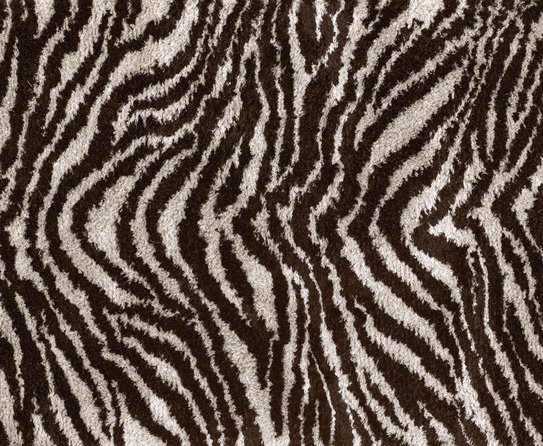 Animal Print Rugs Especially For Guest Room