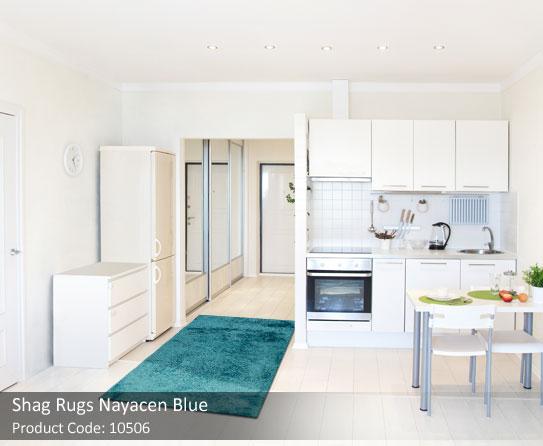 Blue Rug1