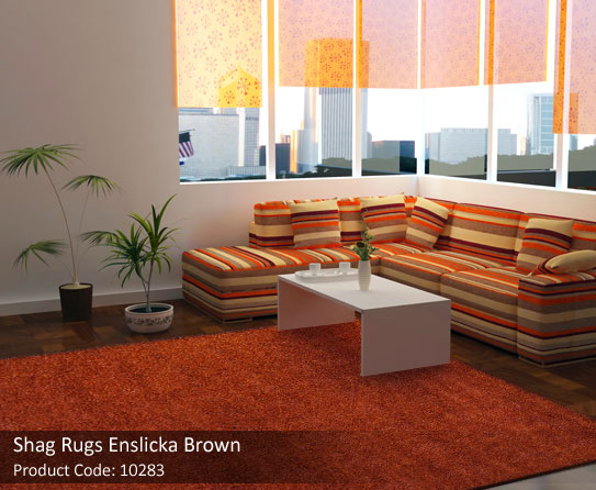 Burnt Orange Shag Rug Roselawnlutheran