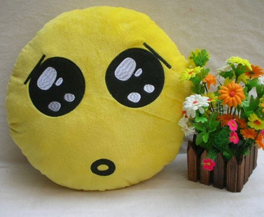 Amuse yourself with Funny Expression Pillows