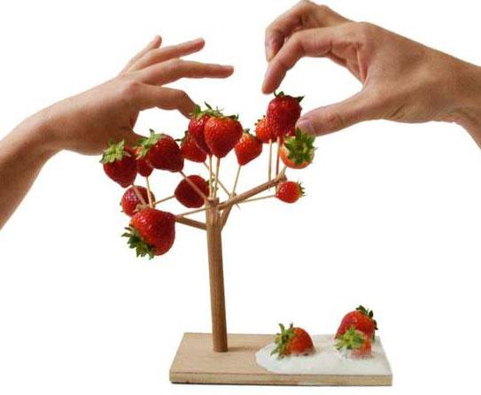 Fruit Holder 18