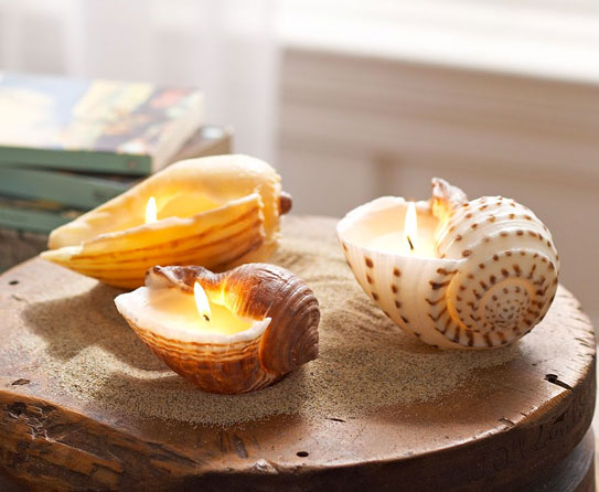 Seashell Candle Holder 5