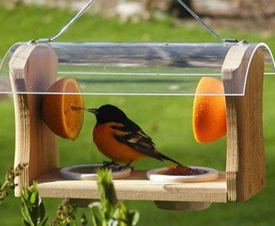 Make Your Garden Attractive With Decorative Bird Feeders