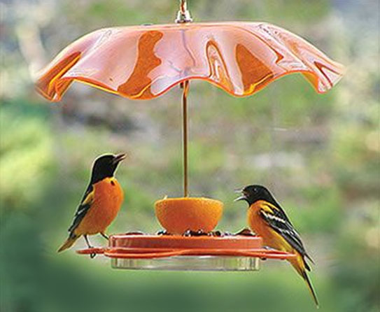 Make Your Garden Attractive With Decorative Bird Feeders