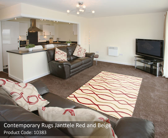 Contemporary rug red brown3