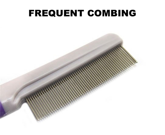 Frequent Combing 6