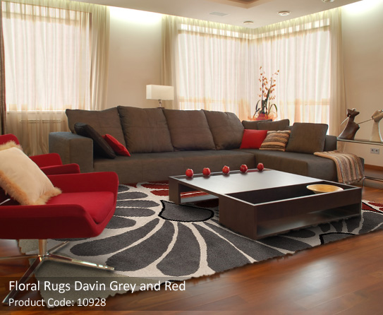 F Grey Red Rugs 2