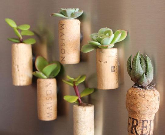 Planter cork 6