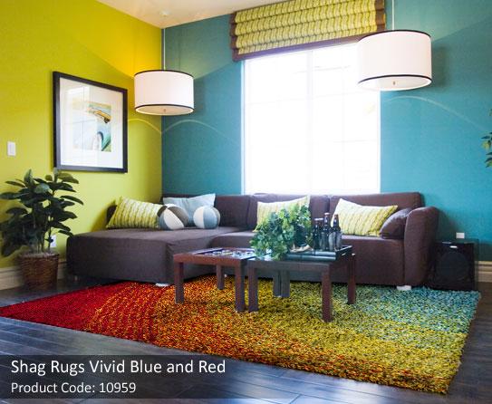 Shag rug multicolor 6