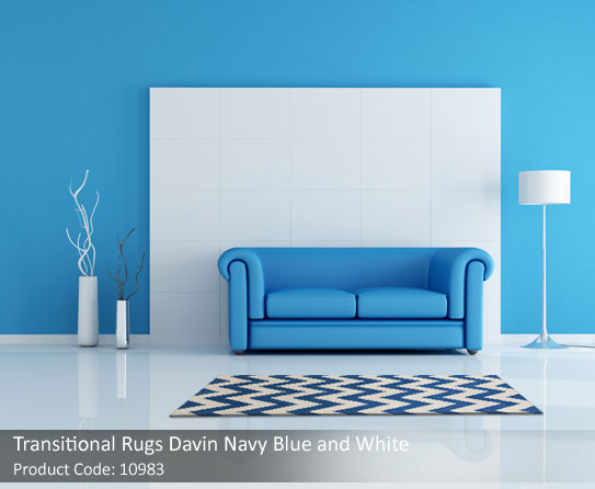 Transitional Rugs blue and white 2