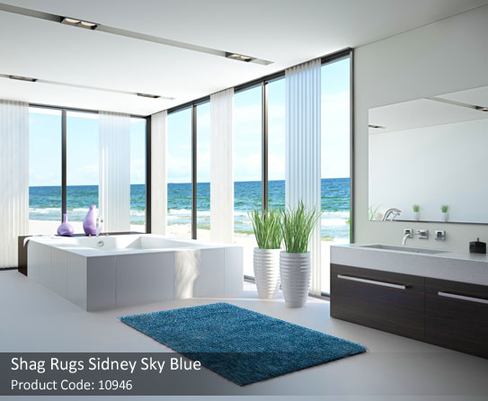 shag blue rugs 8