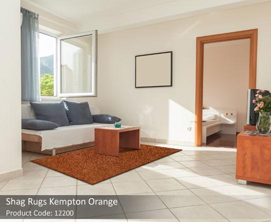 Orange-Shag-rug2